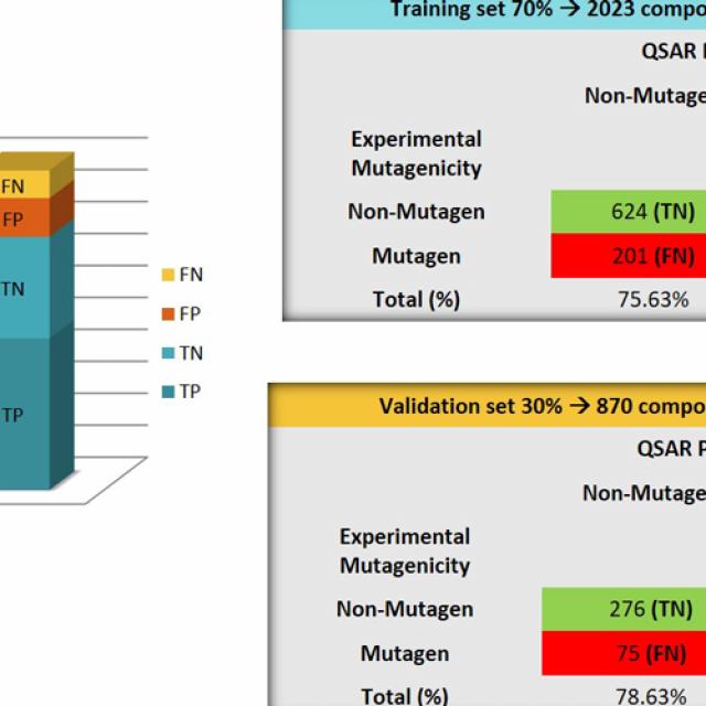 Presentación modelos mutagenicidad